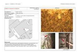 Edificio_Via_Pia_(SV)_scheda_analisi_campione_intonaco