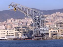gru_maestrale_Genova